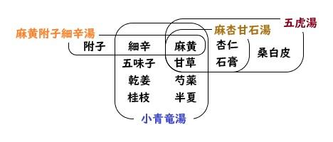 小青竜湯・麻黄附子細辛湯・麻杏甘石湯・五虎湯の構成生薬の関連図