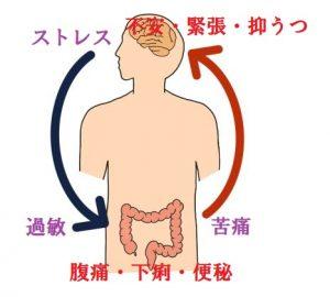 ストレスと消化器症状の関係