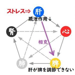 五行論の肝と脾の関係