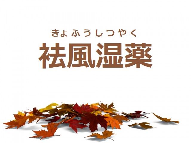 袪風湿薬(きょふうしつやく)